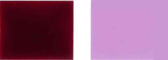 Pigmentti-väkivaltainen-19-Color